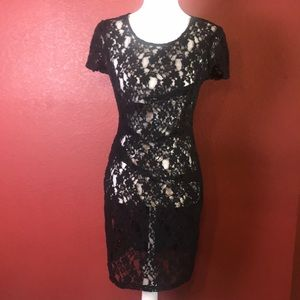DKNY Sheer Lace See Through Party Dress